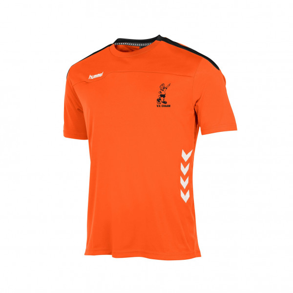 VV Chaam trainingsshirt